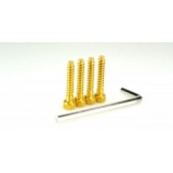HIRO SEIKO 69406 EX1UR Light Weight screw (alloy 7075) Gold